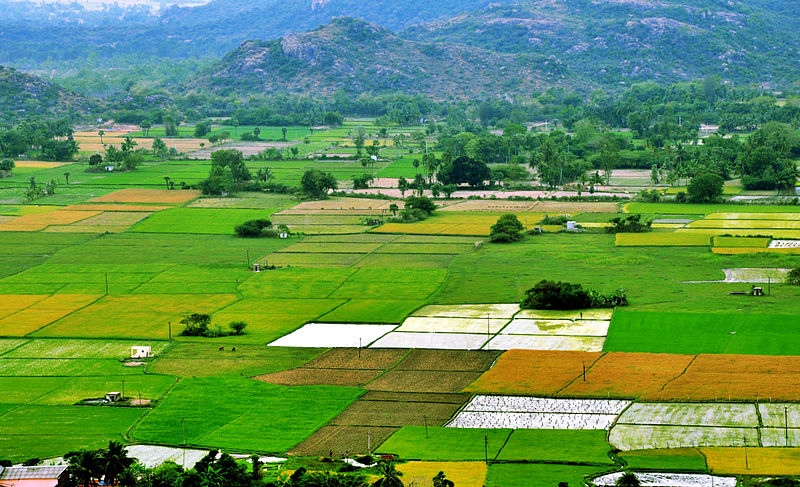 Procedure For Converting Agricultural Land To Non