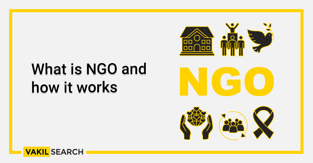 What is NGO and how it works