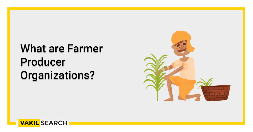 What are Farmer Producer Organizations?