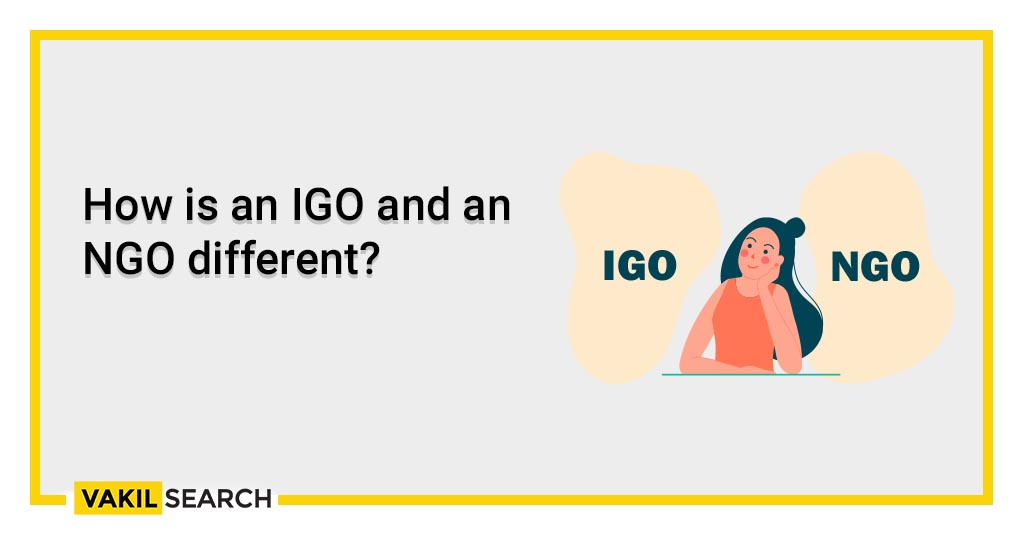 How is an IGO and an NGO different